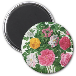 Vintage Blooming Flowers, Spring Garden Roses 2 Inch Round Magnet