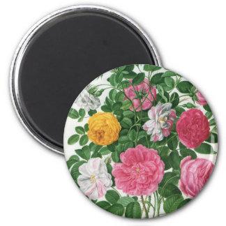 Vintage Blooming Flowers, Spring Garden Roses Magnet