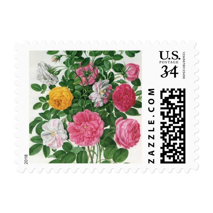 Vintage Blooming Flowers, Spring Garden Roses Postage