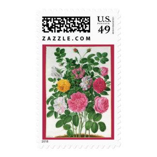 Vintage Blooming Flowers, Spring Garden Roses Stamps