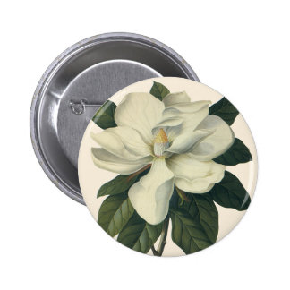 Vintage Blooming White Magnolia Blossom Flowers Button