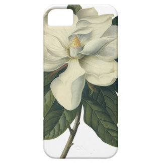 Vintage Blooming White Magnolia Blossom Flowers iPhone SE/5/5s Case