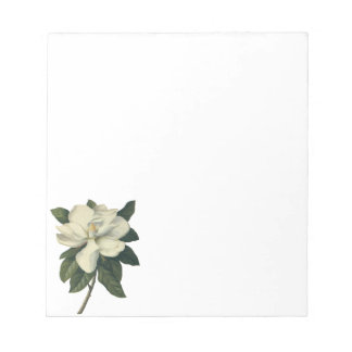 Vintage Blooming White Magnolia Blossom Flowers Notepad