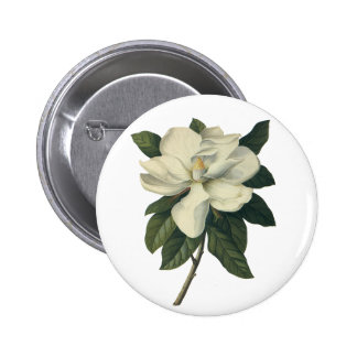 Vintage Blooming White Magnolia Blossom Flowers Pinback Button