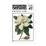 Vintage Blooming White Magnolia Blossom Flowers Stamp