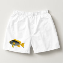 Vintage Blue and Yellow Grouper Fish, Marine Life Boxers