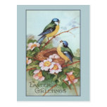 Vintage Blue Bird Easter Postcard at Zazzle