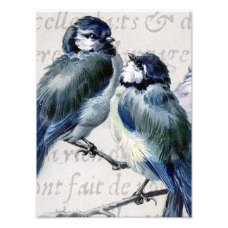 Vintage Blue Birds Collage - Customized Bluebirds Photo