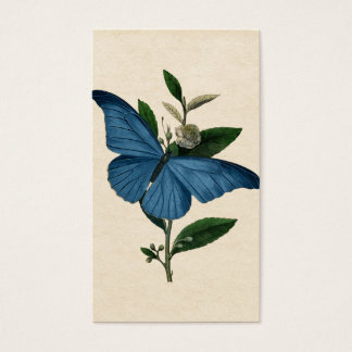 Vintage Blue Butterfly Business Card