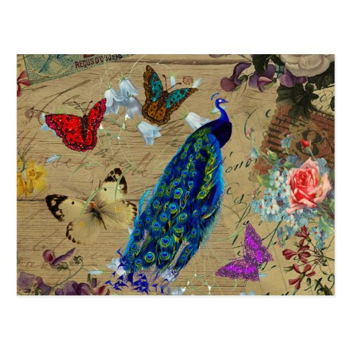Vintage Blue Colorful Peacock Cute Butterfly Post Cards