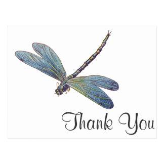 Vintage Blue Dragonfly Postcard