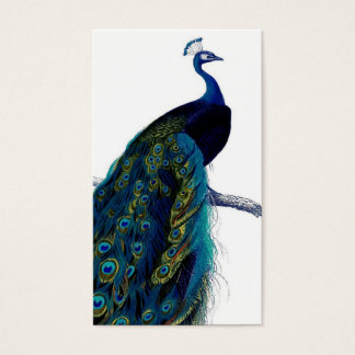 Vintage Blue Elegant Colorful Peacock Business Card