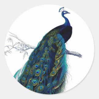 Vintage Blue Elegant Colorful Peacock Classic Round Sticker