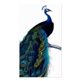 Vintage Blue Elegant Colorful Peacock Double-Sided Standard Business Cards (Pack Of 100)
