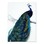"Vintage Blue Elegant Colorful Peacock 5"" X 7"" Invitation Card"