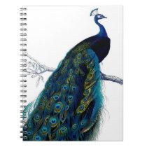 Vintage Blue Elegant Colorful Peacock Notebook