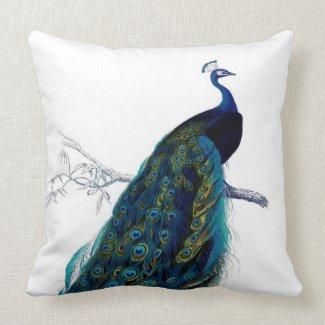 Vintage Blue Elegant Colorful Peacock Pillow