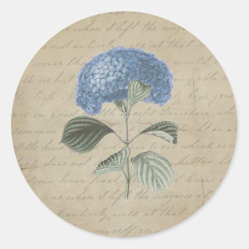 Vintage Blue Hydrangea with Antique Calligraphy Sticker