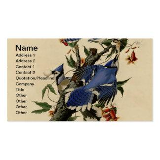 Vintage Blue Jay Business Card