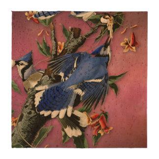 Vintage Blue Jay Illustration (Audubon) Beverage Coaster