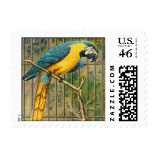 Vintage Blue Macaw Parrot Print Stamps