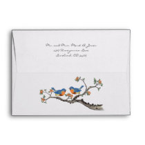 Vintage Bluebird Wedding Envelopes