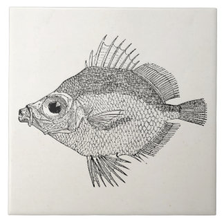 Vintage Boar Fish - Aquatic Fishes Template Blank Tile
