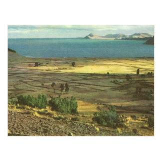 Vintage Bolivia, el lago Titicaca Tarjeta Postal