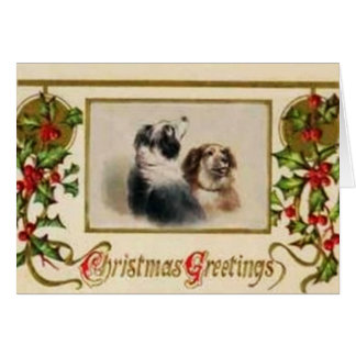 Vintage Border Collie Christmas Card