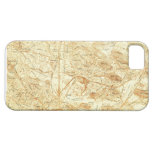 Vintage Boston Map iPhone 5 Covers