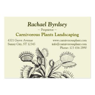 Vintage Botanical Art Large Business Cards (Pack Of 100)