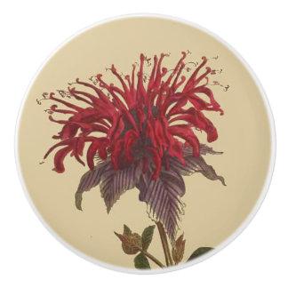 Vintage Botanical Bee Balm Flower Floral Knob Ceramic Knob