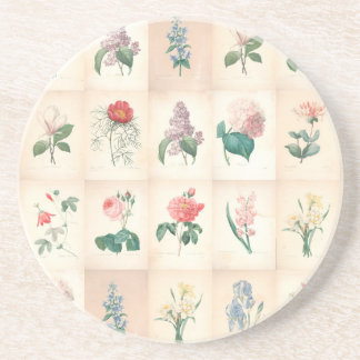 Vintage botanical by Redoute Coaster