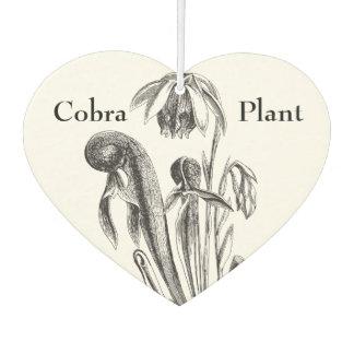 Vintage Botanical California Pitcher Plant