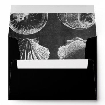 Beach Themed vintage botanical chalkboard beach sea shells envelope