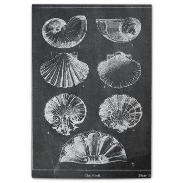 Beach Themed vintage botanical chalkboard beach sea shells post-it® notes
