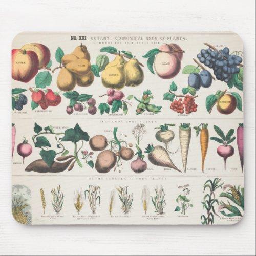 Vintage Botanical Chart: Economical Uses of Plants Mouse Pad