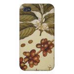 Vintage Botanical Coffee Picture Cases For iPhone 4