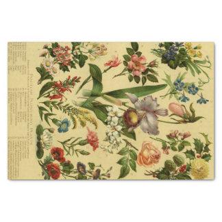 """Vintage Botanical Floral 10"""" X 15"""" Tissue Paper"""