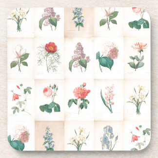 Vintage botanical Flowers by Redoute - Coasters