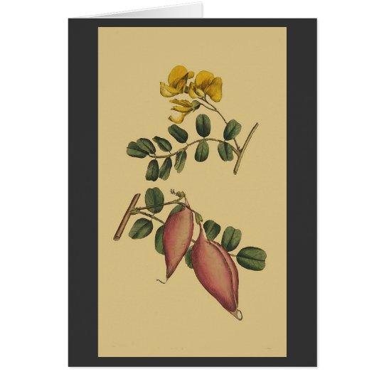 Vintage Botanical Flowers Floral Garden Card