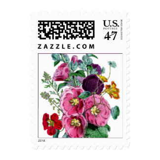 Vintage Botanical Hollyhocks  Print - Stamp