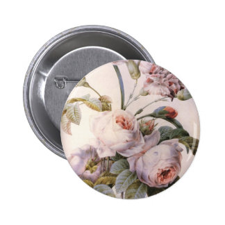 vintage botanical illustration, pink rose pins
