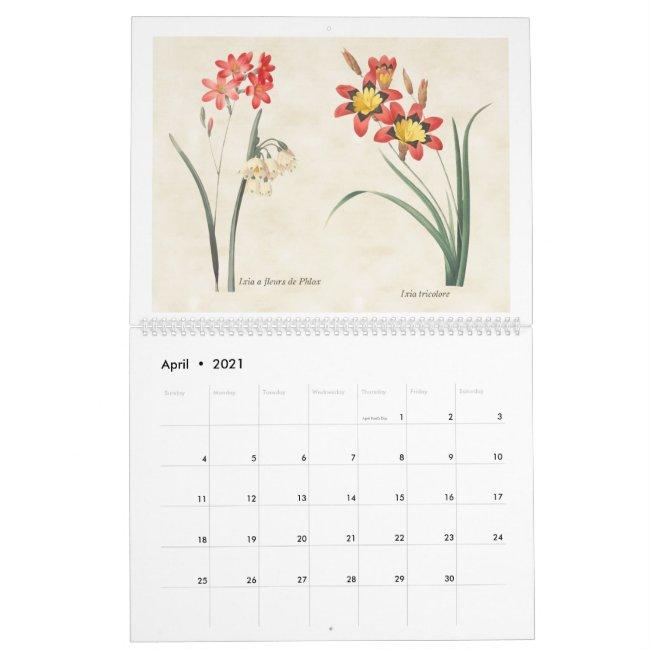 Vintage Botanical Illustrations 2021 Calendar