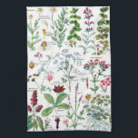 "Vintage Botanical Illustrations Kitchen Towel<br><div class=""desc"">Botanical Illustrations - Larousse Plants.  Please visit my store for more interesting design and more color choice => zazzle.com/colorfulworld*</div>"