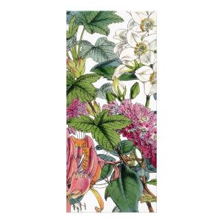 Vintage Botanical Illustrations Rack Card