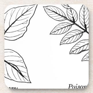 Vintage Botanical Leaves Drink Coaster