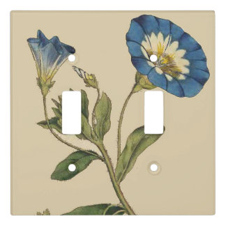 Vintage Botanical Morning Glory Flowers Floral Light Switch Cover