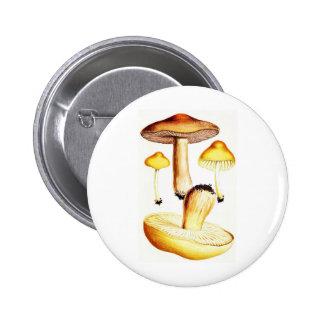 Vintage Botanical Mushrooms Button