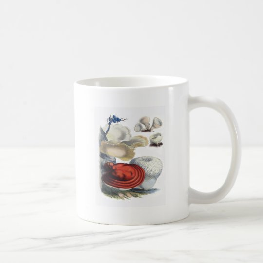 Vintage Botanical Mushrooms Coffee Mug